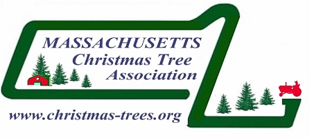 Massachusetts Christmas Tree Association | MCTA